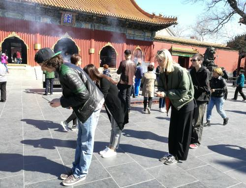 The Lama Temple and Guozijian- Culture Tour on a Sunny Day for Au Pairs in Beijing