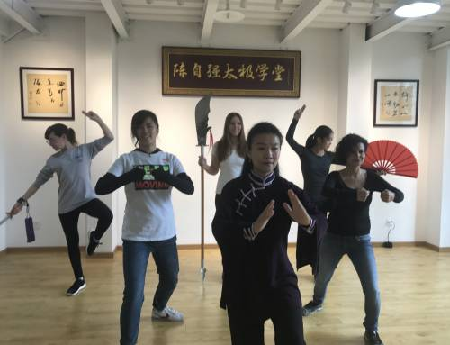 Kung Fu Tai Chi Culture Event for Edu Aupairs in Beijing, China